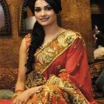 Prachi Desai saree hot