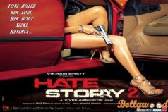Hate Story 2 Review