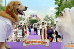 Akshay Kumar's Its Entertainment First Day Box Office Collection