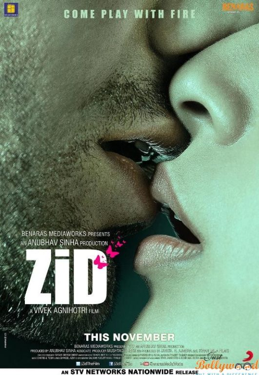 zid first look
