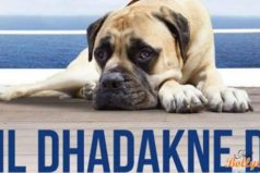 Dil Dhadakne Do Dog- Pluto Mehra now owns a Twitter account