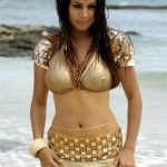 Shradha Arya Hot Wallpaper