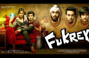 Fukrey Sequel to come this August 2016