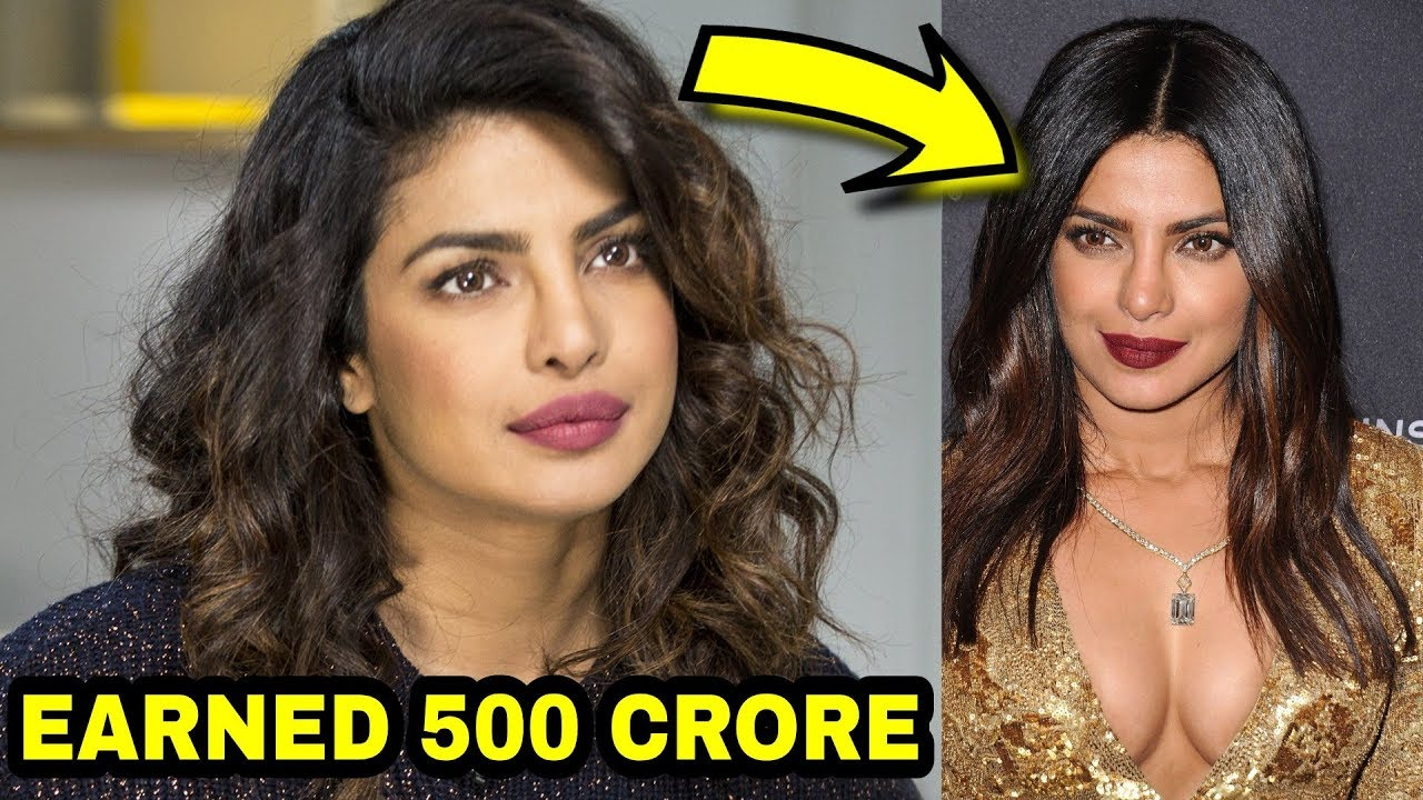 Priyanka Chopra Earned in 2017 ?