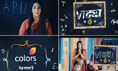 Vidya Colors TV Serial