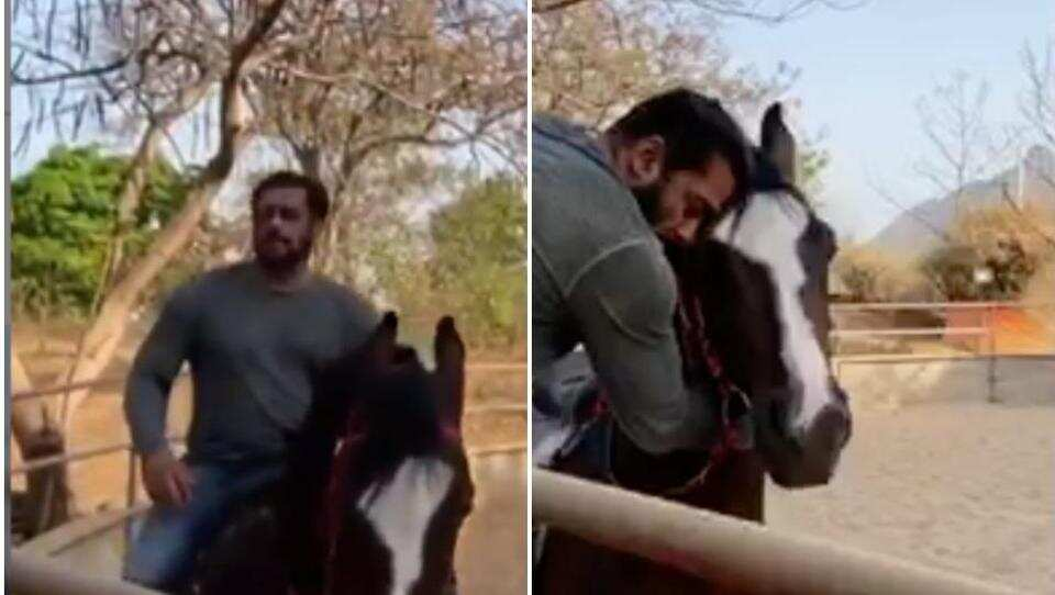 Photo of Salman Khan's horse riding video in his Panvel farmhouse is going viral