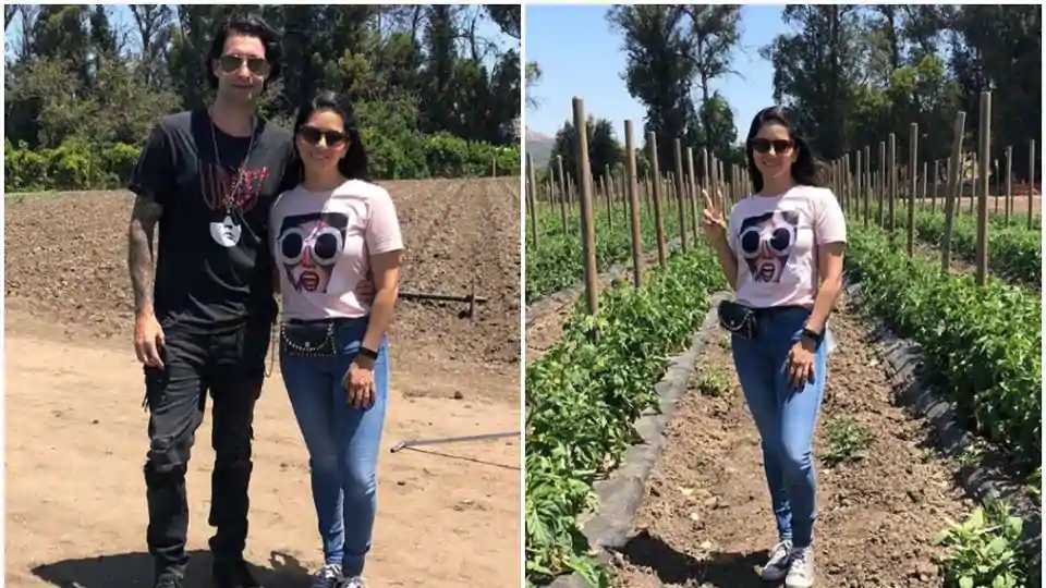 Sunny Leone is now relying on the natural farms to get her veggies